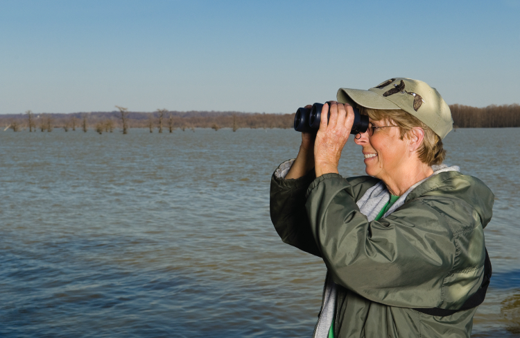 Bald eagle birdwatching boat tours on Reelfoot Lake in West Tennessee