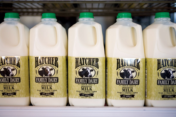 Hatcher Dairy milk
