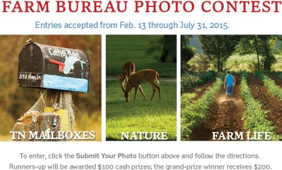 TN Farm Bureau Photo Contest