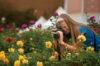 Tennessee Farm Bureau Photo Contest