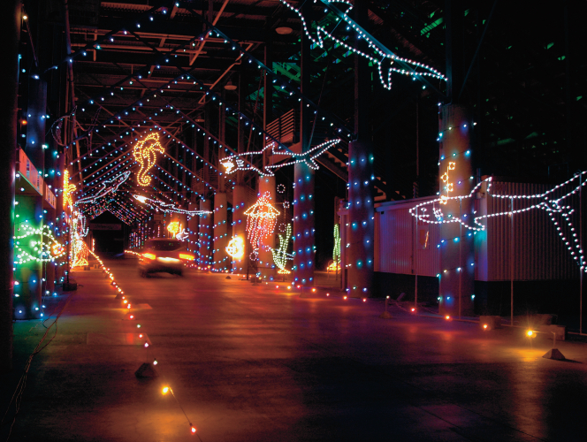 Exhibition Displays Bristol : Bristol speedway lights up holiday nights tennessee home