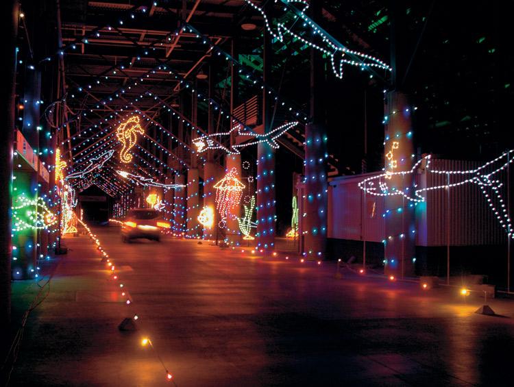 Bristol Speedway Lights Up Holiday Nights Tennessee Home