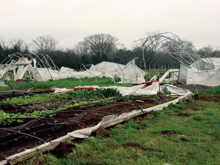 Rocky Glade Farm after Good Friday 2009 tornado