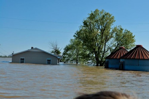 flooding on a farm near Dyersburg, Tennessee