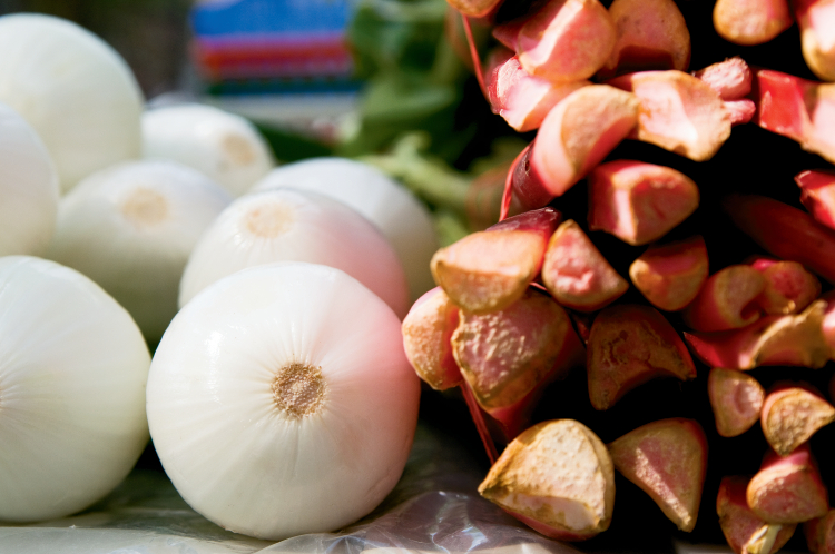 Seven Springs Farm in Tennessee grows rhubarb and onions