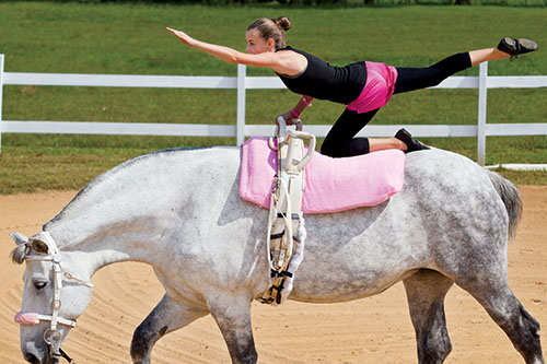 Monroe County Vaulting Club