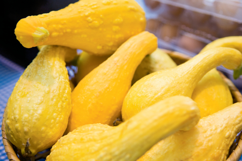 Blanch and Freeze Summer Squash