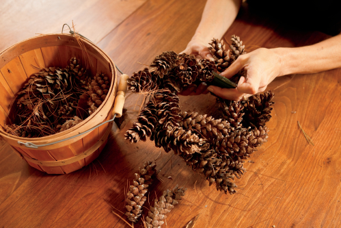 Pine cone decorating