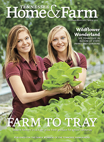 TN Home and Farm Spring 2014