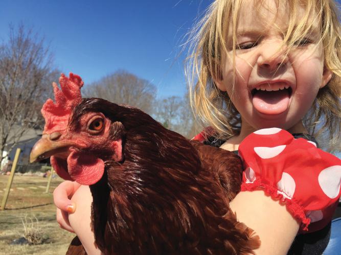 TN Farm Bureau Photo Contest