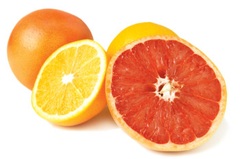 Winter Citrus