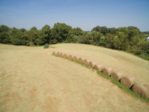 hay farmers