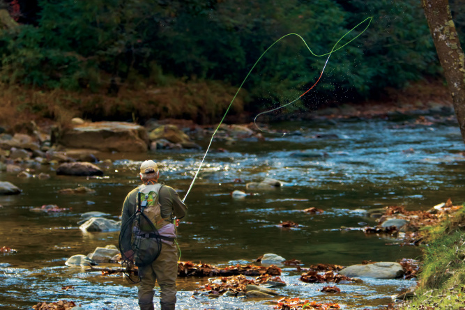 Why east tennessee rivers and lakes are perfect for fly for Fishing lakes in tennessee