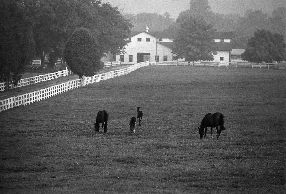 Harlinsdale Farm historic
