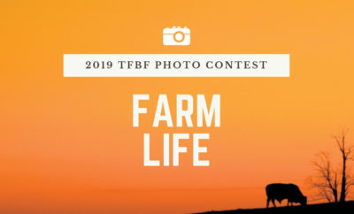 photocontest-farmlife