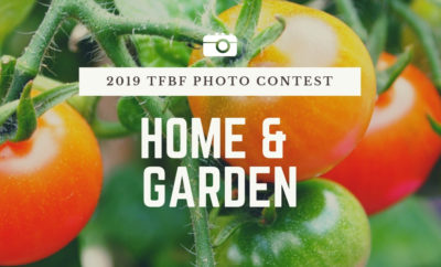photocontest-homegarden
