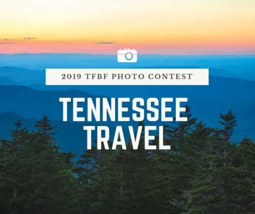 photocontest-tntravel