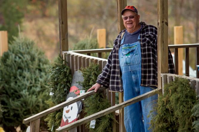 tree farmers
